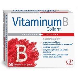 Vitaminum B 60 tabl