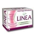 Fix herbata Linea a 20 sasz