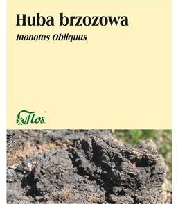 Huba brzozowa 50g