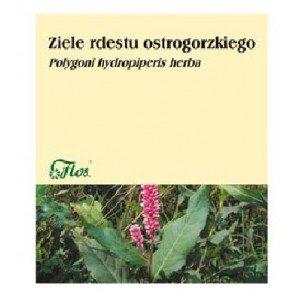 Rdest ostrogorzki ziele 50 g