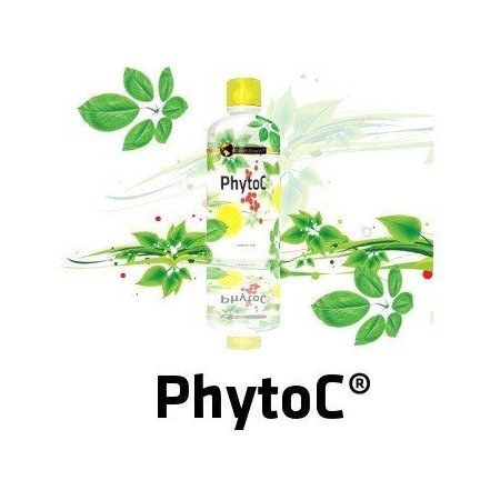 Phyto C 100% naturalna witamina C 500ml. Lewoskrętna