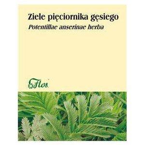 Srebrnik (Pięciornik gęsi) ziele 50g