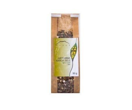 NANGA, Artemisia annua ziele(bylica roczna), 50g.