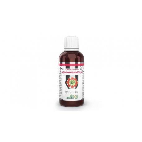B&M ASHWAGANDHA – liposomalny ekstrakt ziołowy